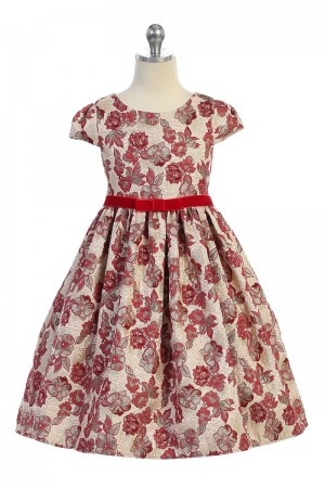 Red & Champagne Brocade Dress